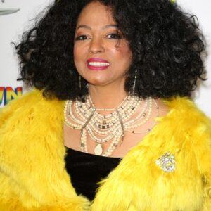 Diana Ross Wig Images