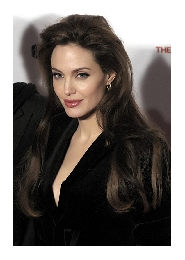 Celebrity full lace human hair wigs