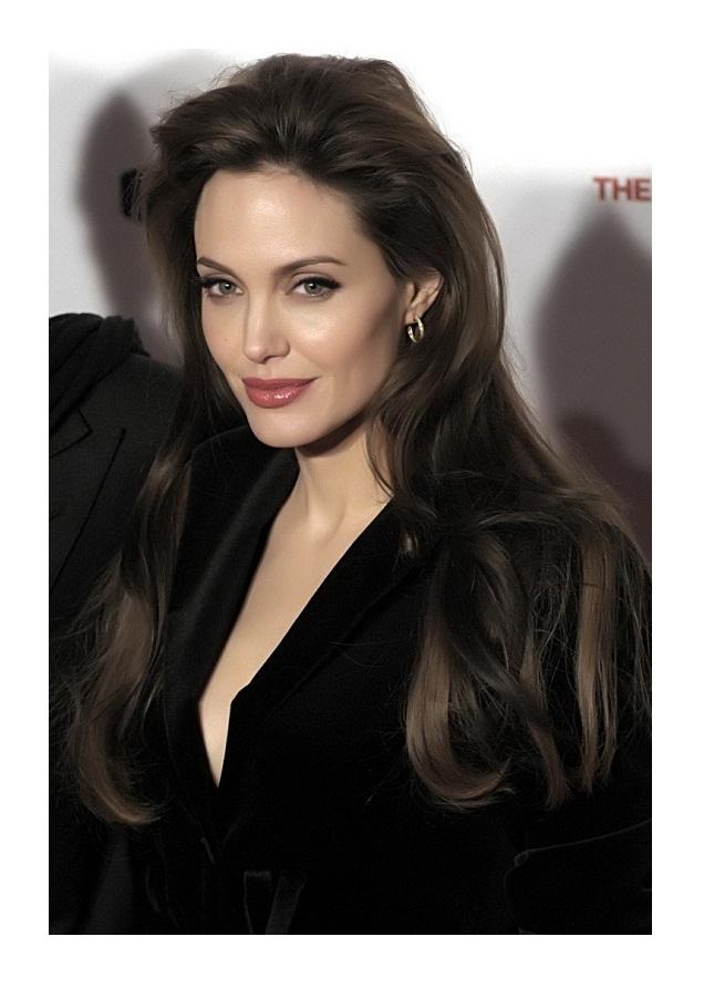 Angelina Jolie Wig